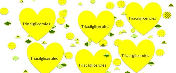 Los AceiteS de Oliva Vírgenes por dentro