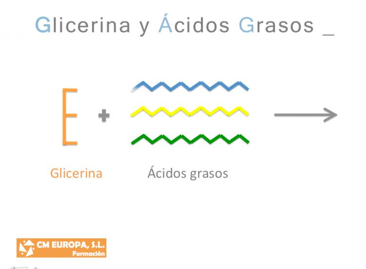 Glicerina y acidos grasos